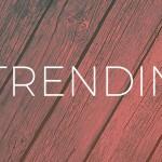 Fall Trend Forecast | DcDesignHouse.ca